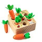 Holzspielzeug ab 1 Jahr   Baby Motorik Spielzeug für 12 Monate Jungen und Mädchen   Montessori Sortierspiel Holzpuzzle Karottenernte   Lernspielzeug für Kinder als Geburtztag Geschenk