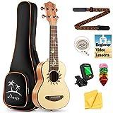 Donner Sopran Ukulele 21 Zoll für Anfänger Kinder Erwachsene Ukulele Starter Kit Mahagonieholz mit Nylon Saiten Hawaii Gitarre DUS-3