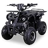 Kinder Quad S-8 Farmer 125 cc Motor Miniquad 125 ccm Toronto (Schwarz)
