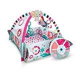 Bright Starts, 5 in 1 Spieldecke mit Spielbogen, Your Way Ball Play - mit anpassbaren Wänden, Melodien sowie 35 Bällen und weiteren Spielzeugen, pink