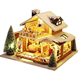 Teksome DIY Miniatur Puppenhaus Bausatz aus Holz - Handmontiert EIS Schnee Bausteine Spielzeug mit LED-Beleuchtung für Jungen Mädchen Bastelspielzeug DIY Geburtstagsgeschenk