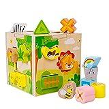 Mettime Steckwürfel aus Holz-Würfel Lernspielzeug-Puzzle Steckbox für Baby & Kleinkind; Motorikwürfel mit 15 Steckbausteinen Holz-Spielzeug; Förderung von Formerkennung und Konzentration