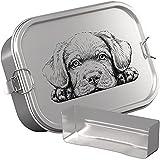 DUDE BOX Brotdose Edelstahl 1200ml | auslaufsicher & nachhaltig | Lunch Box Kinder mit Trennwand | Bento Box Butterbrotdose Brotbüchse mit Fächern (Hund)