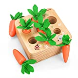 Montessori Baby Lernspielzeug, 1 Jahr Alte Kinder Vorschule Lernspielzeug Karottenspielzeug Aus Holz für 2 3 jährige Jungen Und Mädchen Frühe Entwicklung der Sinne bei 6 Monate Alten Babys Spielzeug