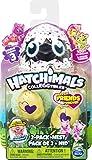 Hatchimals CollEGGtibles 2 Pack + Nest S3