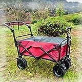 HHYYP Bollerwagen Faltbarerwagen Gartenwagen, Draussen Schubwagenwagen Zusammenklappbar Strand Garten Einkaufswagen 100kg Belastbarkeit (Color : H)